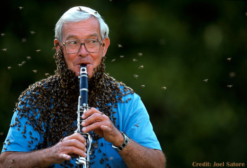 Dr. Norman Gary Covered in Beees Playing Flute