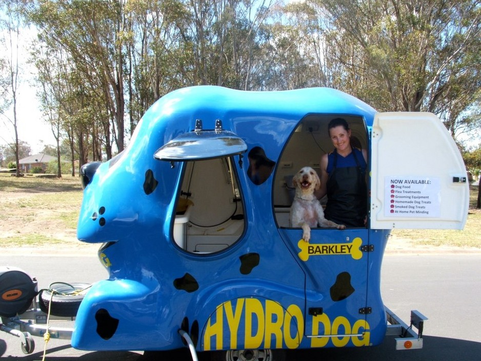 Aussie Family Travels Across America Washing Dogs