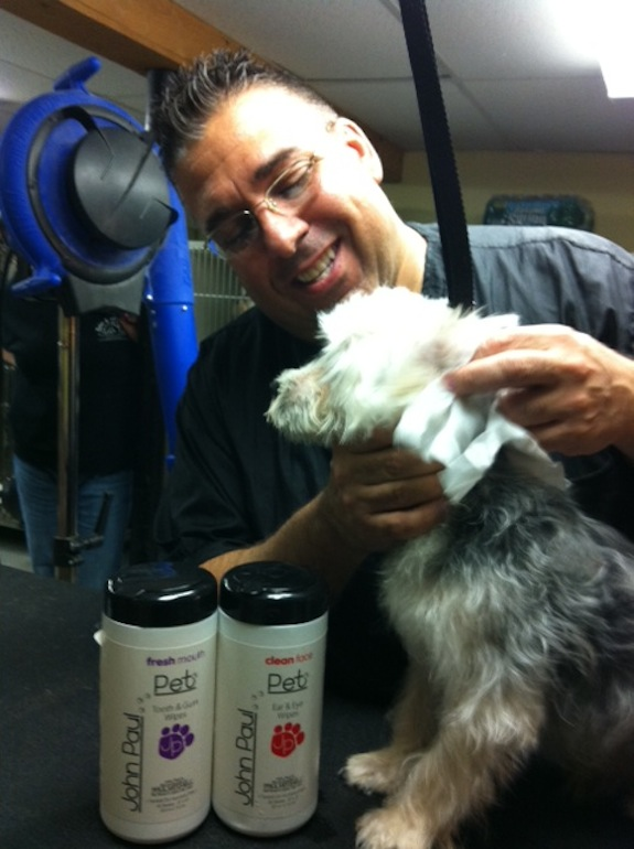 Joey Villani legislates for Groomer Regulation