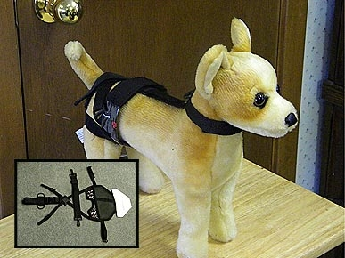 Pet Chastity Belt