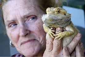 Lady gives bearded-dragon CPR