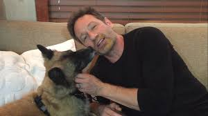 David Duchovny Lick My Face