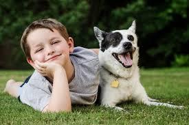 Human Dog Bond