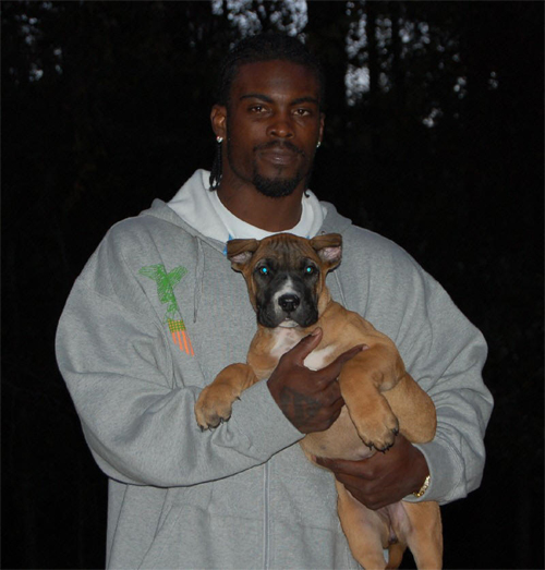 Michael Vick Gets Dog?