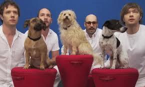 OK Go - Tim Nordwind on Animal Radio®