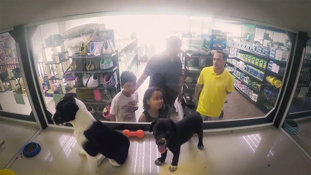 Pet store switches pets for sale with shelter pets