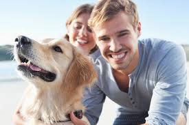Young couples choosing pets over kids