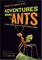 Adventures Among Ants book cover