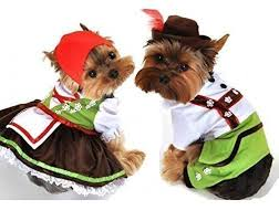 Boy and Girl Dog Costumes
