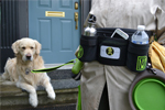 The DWP Dog Walking Pouch