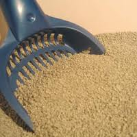 Kitty litter with scoop