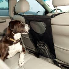 Dog in car with Pet Travel Barrier