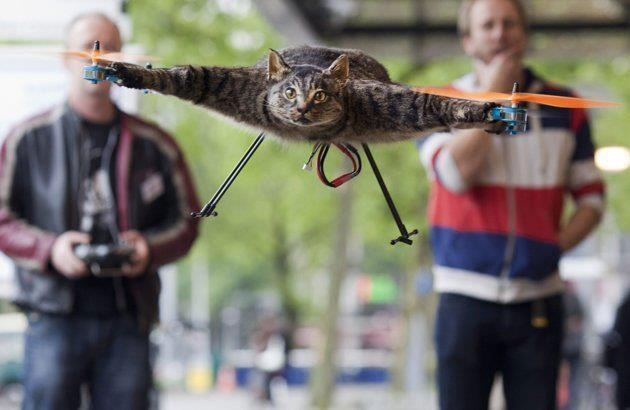 Caticopter