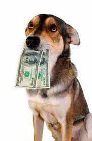 Dog Eats Money