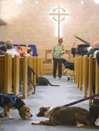 Dogs in Church