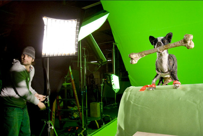 Animal Radio® goes behind the scences for Hotel for Dogs