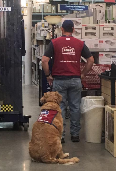 Lowes hires dog and human