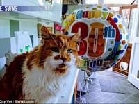 30 year old cat celebrates birthday on Animal Radio