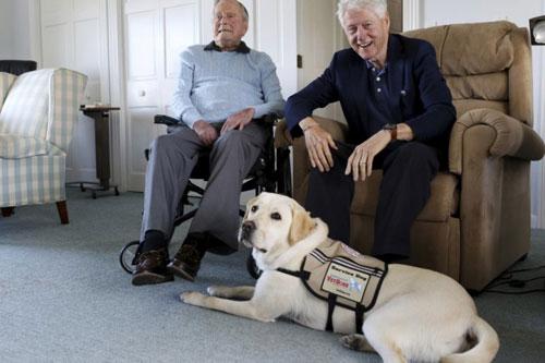 President Bush, President Clinton and Service Dog