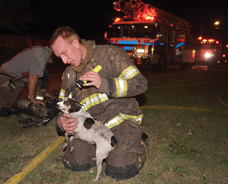 EMTs should legally be allowed to help animals without being penalized