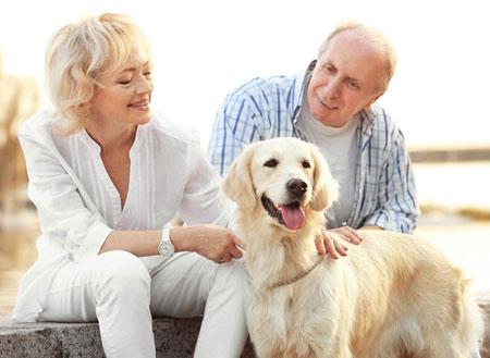 Does your pet have a pet trust?