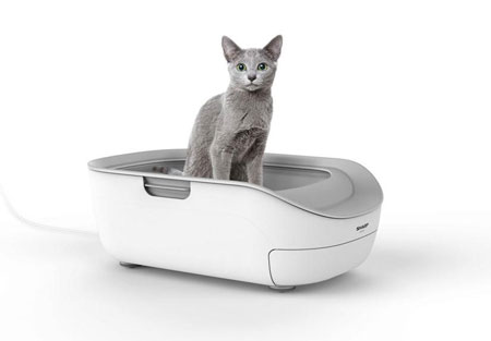 Sharp Cat Toilet