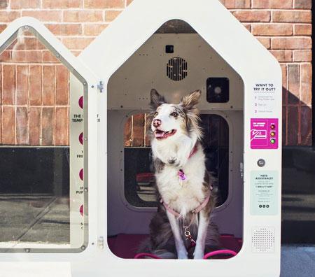 Dogipot Dog Parking Explained