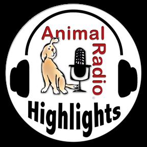 ffd6c4b9f32 Bite size snacks of Animal Radio ...