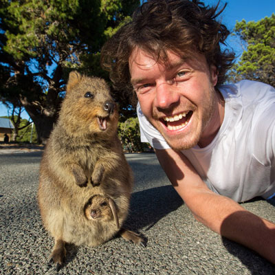 Allan Dixon tells Animal Radio listeners how he makes a living taking selfies with animals.