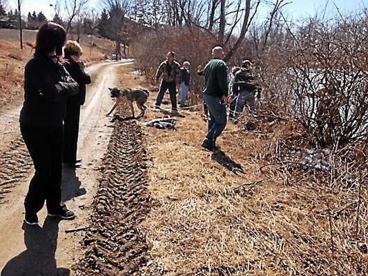 Mike Bruner Saves Drowning Dog
