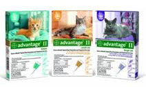 Bayer Advantage II for cats.661