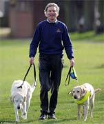 A guide dog for a blind guide dog