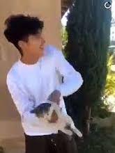 Boy Throws Cat