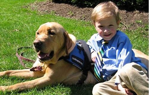 Should children have service animals