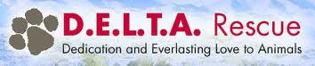 D.E.L.T.A. Logo
