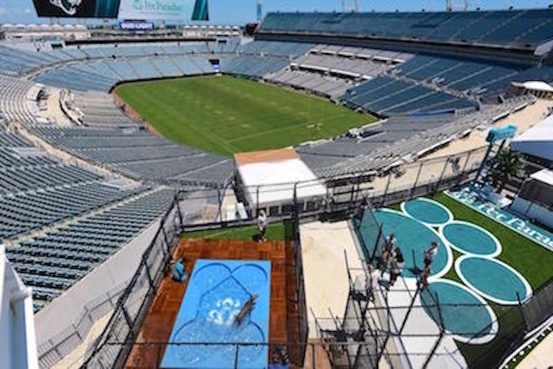 Dog Stadium