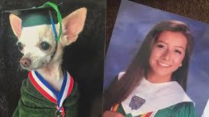 Graduation Dog Photo Swap