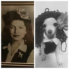 Grandmother Dog Photo Swap