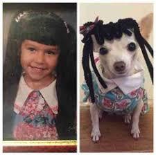 Kindergarten Dog Photo Swap