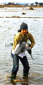 Man holding rescued purpoise