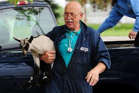 Nat Geo's Incredible Dr. Pol is on Animal Radio®