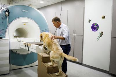 Neuroscientist Gregory Berns is on Animal Radio