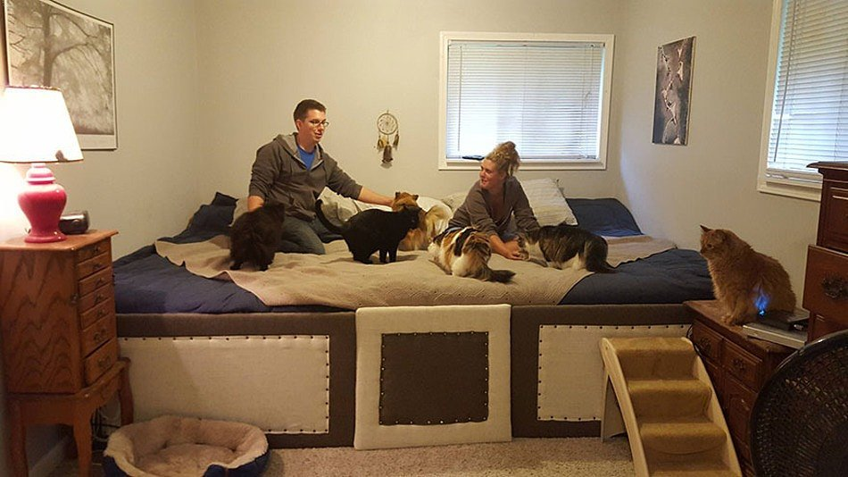 Guy Makes Bed Big Enough For Pets Too