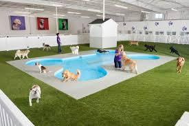 New Animal Terminal at JFK
