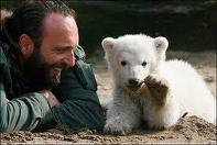 Knut with handler