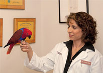 Dr. Laurie Hess with parrot.670