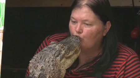 Pet Alligator