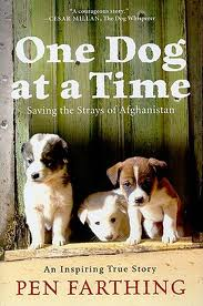 One Dog At A Time book cover.657