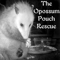 The Opossum's Pouch Rescue Logo