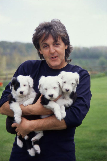 Sir Paul McCartney says Beatles song has stuff only your dog can hear in it